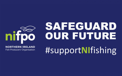 SAFEGUARD OUR FUTURE | #supportNIfishing campaign